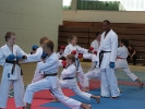 Karate Camp Saarwellingen 2013_7
