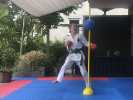 Karate im Homeoffice 2020