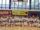 Pfingst Karate Camp 2015_2