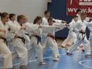 Pfingst Karate Camp 2015_6
