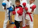 2020-05 SEN5 Rhein Shiai e-Kumite-Challenge (Online-Turnier)_3