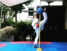 2020-05 SEN5 Rhein Shiai e-Kumite-Challenge (Online-Turnier)_7