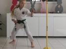 2020-05 SEN5 Rhein Shiai e-Kumite-Challenge (Online-Turnier)_8